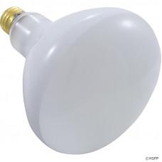 Light Bulb 300W 120V Medium Base - R40FL300/HG