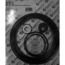 Aladdin Pump Kit Pentair Challenger - GO-KIT-5-9
