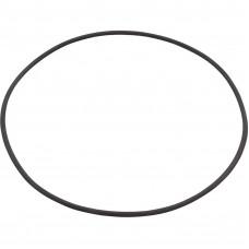Astral Oring Filter Lid Terra - 4404210302