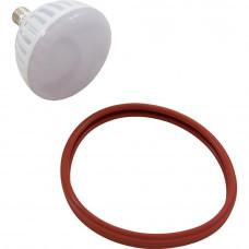 J&J Electronics Light Bulb Led White 12V 21W Medium Base 300W - LPL-PR-WHT-12
